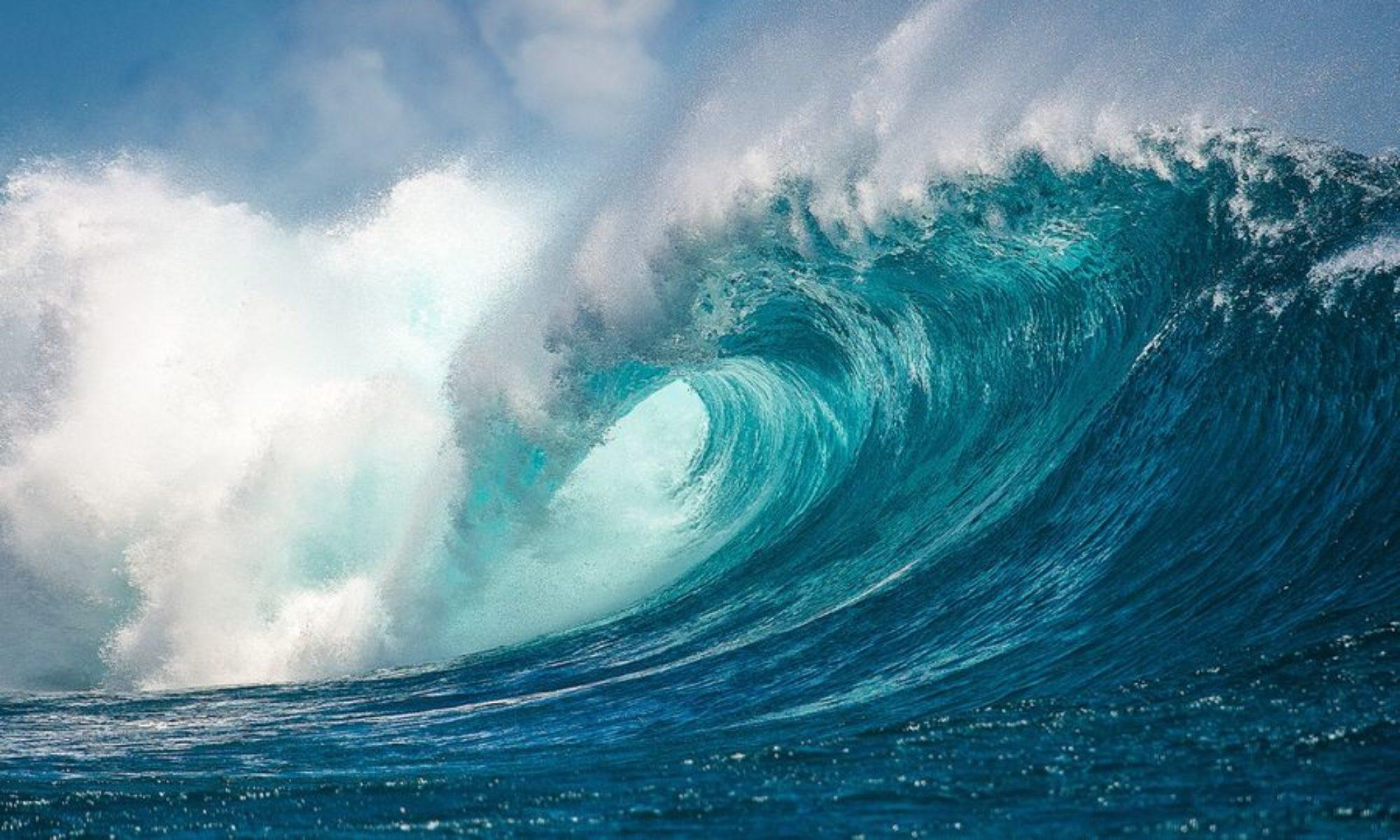 OceanEssay.com